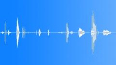 SFX - Male laugh 2 Äänitehoste