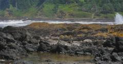 Rocky Coastal Oregon Shoreline Stock Footage