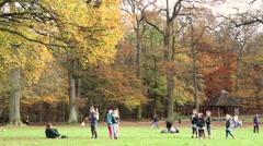 BRUSSELS, BELGIUM - NOVEMBER 23 2014: Autumn weekend in the park Stock Footage
