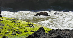 Waves Passing by Mossy Rocks Stock Footage