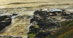 Golden Oregon Coast Stock Footage
