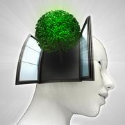 Leafy tree coming out or in human head through window ecological concept Stock Illustration