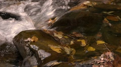 river in autumn - stock footage