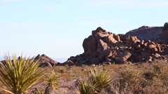 Slow pan of a desert scene Stock Footage