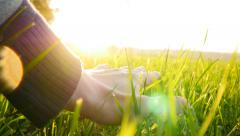 person touching green grass field flowers at sunset light - stock footage