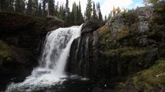 Moose Falls in Yellowstone Stock Footage