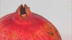 One pomegranate  rotating in front of camera - stock footage