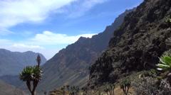 View of the Rwenzori Mountains, Uganda Stock Footage