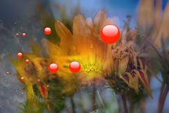 Blurred plants  with red bubbles in front - stock illustration