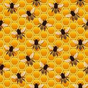 bee honeycomb pattern - stock illustration
