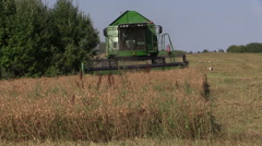 Front of farm machinery harvest combine work thrash corn field Stock Footage