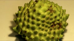 Green soursop  rotating in front of camera. HD video Stock Footage