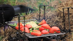 Vegetables fried on a grill Stock Footage