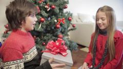 Boy giving a surprise to his sister - stock footage
