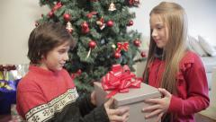 Little girl giving a surprise to her brother - stock footage