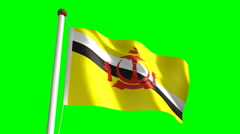 Brunei flag - stock footage