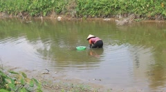 Poor farmers caught snail in the river, Asia Stock Footage