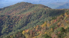 mountain trees in the fall from blue ridge parkway, nc - stock footage