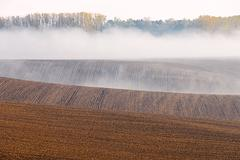 foggy morning during late summer - stock photo