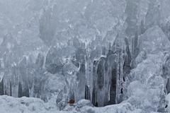 Fringe of ice Stock Photos