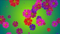 Falling flowers Stock Footage