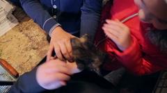 Animal shelter, children are holding kittens - stock footage