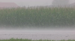 Stock Video Footage of Severe thunder storm heavy rain and swirling clouds approaches crops on farm.