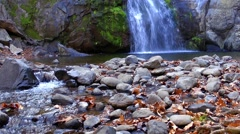 Turkmen Waterfall and Mossy Rocks and Dry leaves in Autumn. Stock Footage