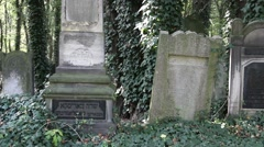 The old Jewish cemetery - Lodz, Poland 1 Stock Footage