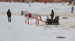 Riding in a sleigh, arrival Arkistovideo