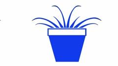 Moving of 3D Bonsai.tree,miniature plant,gardening garden. - stock footage