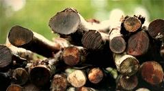 Woodpile in the rain Stock Footage