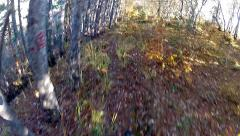 Mountain bike video: a single track in the forest - stock video Stock Footage