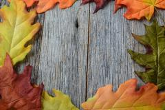 fall leaves on a rustic wood background in the shape of a frame - stock photo