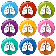 Buttons with lung organ - stock illustration