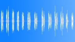 Cockatiel Sounds - sound effect