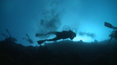 Divers from below at steep wall Bunaken Indonesia Stock Footage