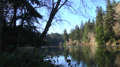 Lake Sylvia State Park Washington Olympic Peninsula Stock Footage