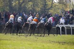 Group of racehorse riders gallops to the obstacle, shooting from behind Stock Photos