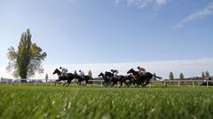 Group of racehorse riders gallops to the obstacle Stock Photos