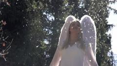 Angel Wings Beat Stock Footage