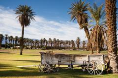 Old buckboard covered wagon palm tree oasis death valley Stock Photos