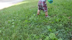 Toddler walks through a yard Stock Footage