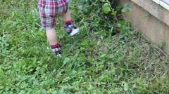 Toddler stumbles on long grass while walking through yard Stock Footage