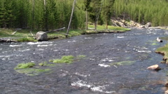 141120b river in yellowstone Stock Footage