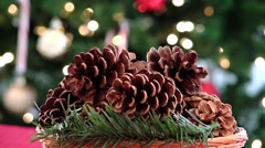 pines christmas centerpiece decor and tree - stock footage
