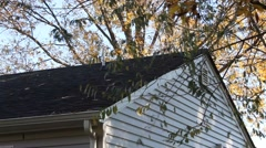 Branches moving over the rooftop of a house Stock Footage