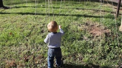 Toddler playing with branches hanging from a tree Stock Footage