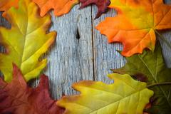 Fall leaves on a rustic wood background in the shape of a frame Stock Photos