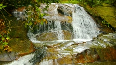 small waterfall in the rainforest. phuket, thailand - stock footage